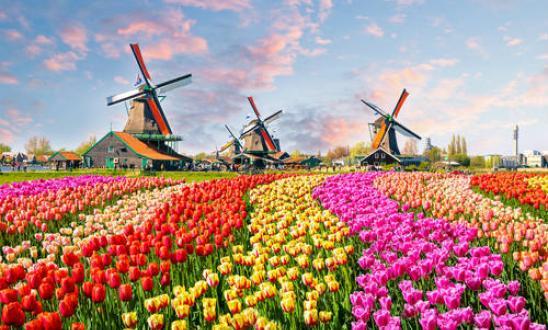 Ολλανδία dating ιστοσελίδα